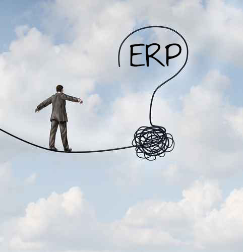SaaS ERP implementation - the power of fear