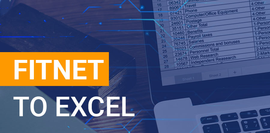 Fitnet to excel